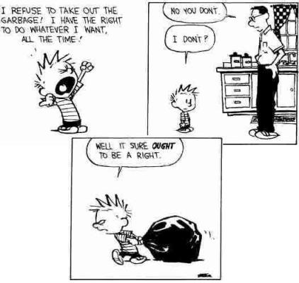 calvin-on-rights2